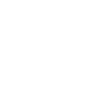 Black Axe Throwing Target icon